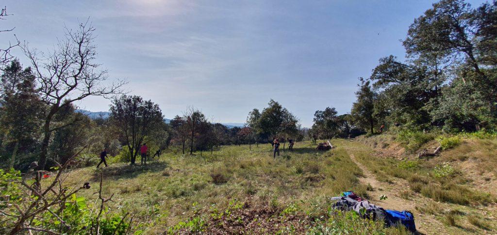 debroussaillage, biodiversité,Cazaban, lycée Charlemagne