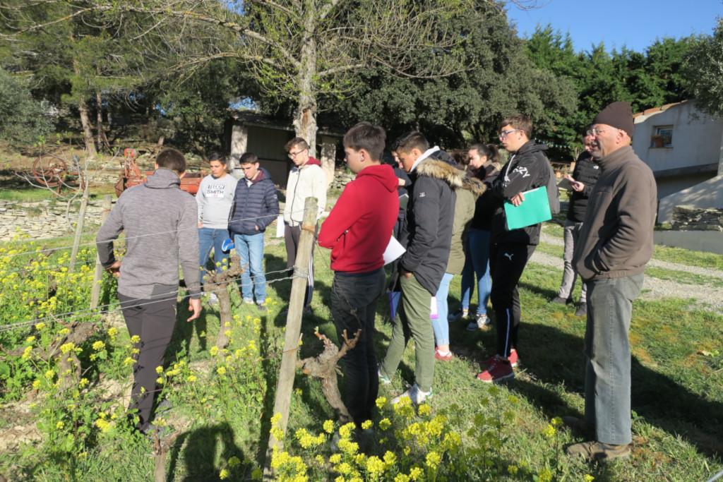 enherbement, viticulture, lycée agricole, Carcassonne