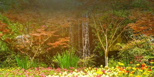 bandeau-paysage-jardin